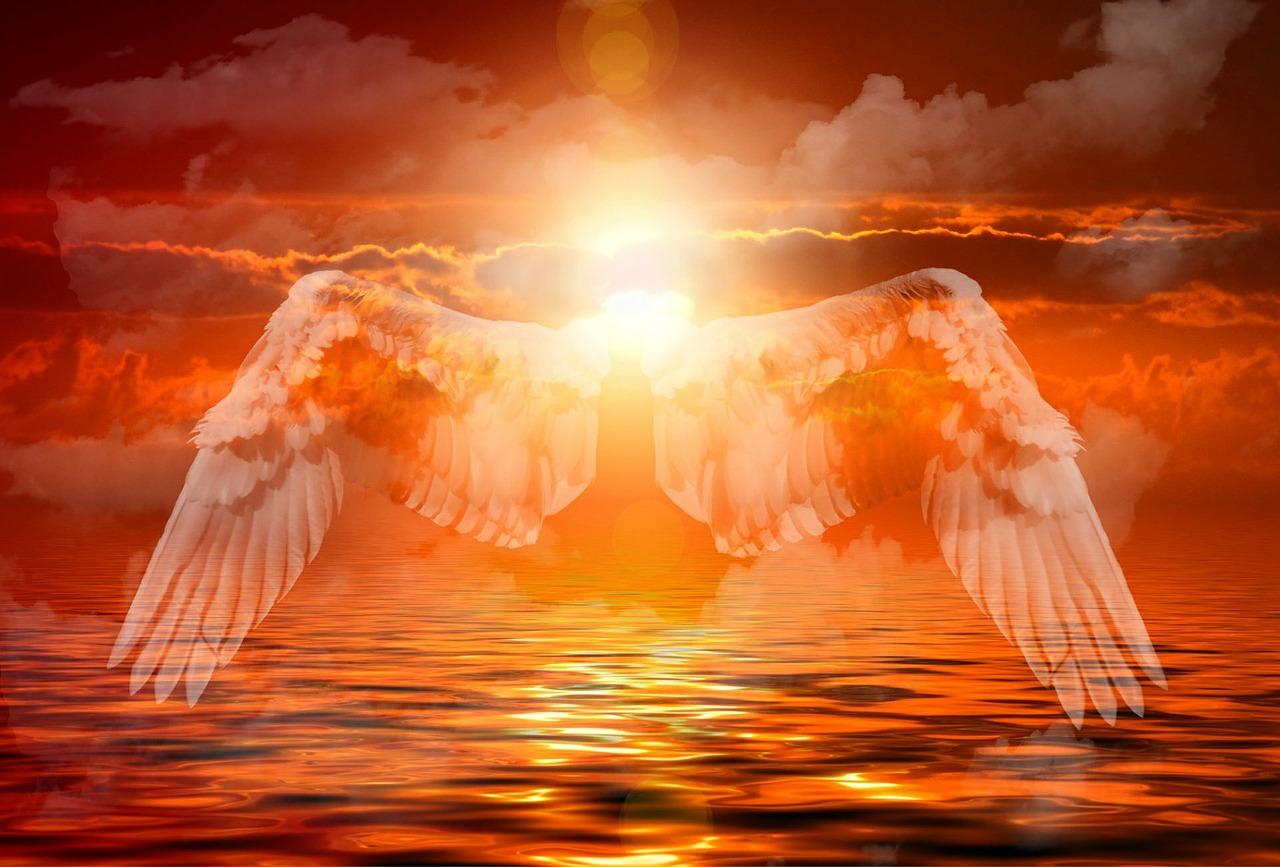 Bildresultat för god angel energy